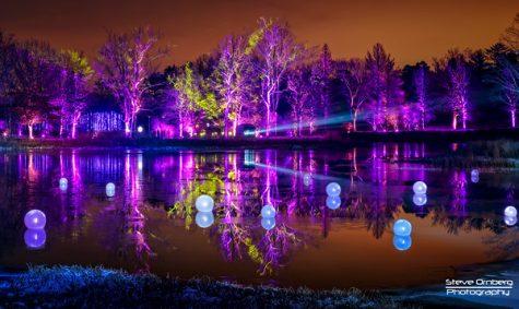 Morton Arboretum Illumination light show