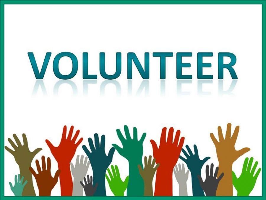 Summer volunteer work