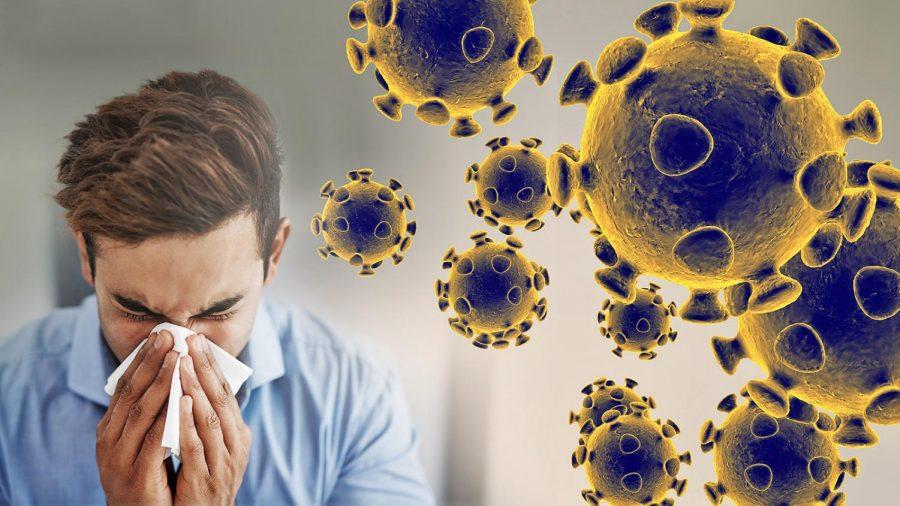 The coronavirus in a nutshell