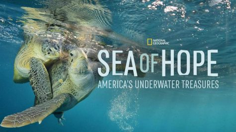 'Sea of Hope': A Life Changing Documentary