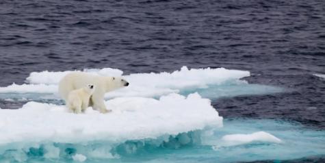 Image Source - Environmental Defense Fund